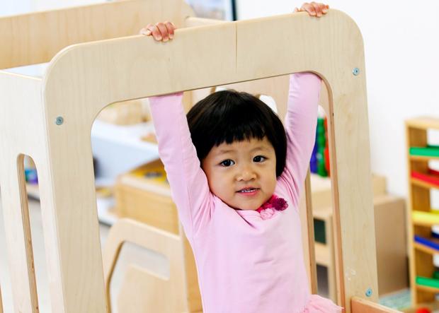 Crabapple Montessori School Programs