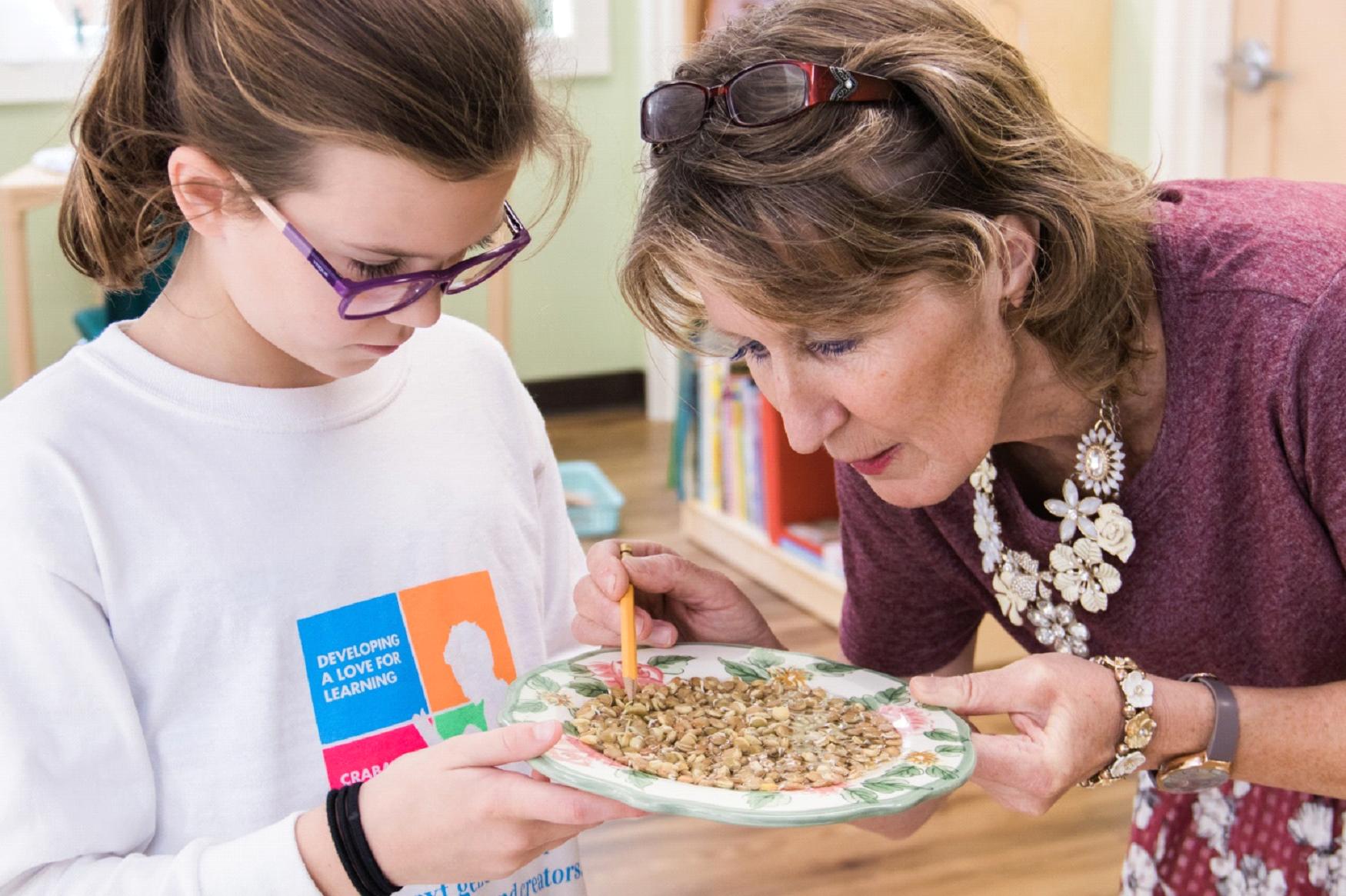 The Role of the Montessori Teacher